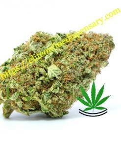 Buy Pineapple Express Online