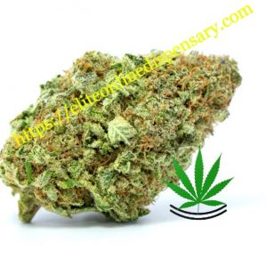Buy Pineapple Express Online